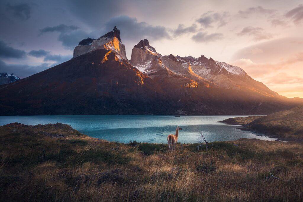 patagonia, photo tour, fitz roy, marcograssiphotography, marco grassi,