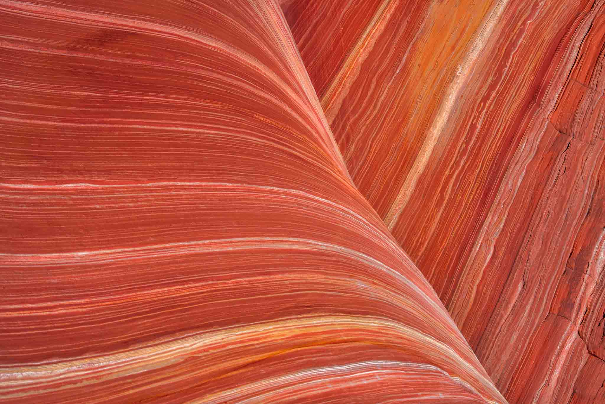 Abstract image of The Wave, USA