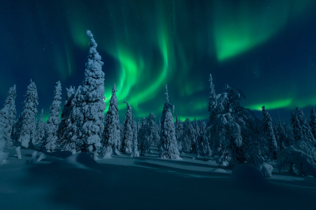 Northern lights during the Lapland Photo tour