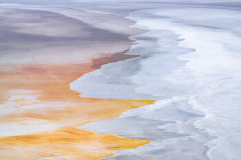 Earth Canvas Collection NFT by Marco Grassi